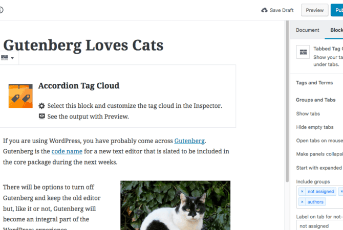 Screenshot - Gutenberg Post Edit screen - WordPress