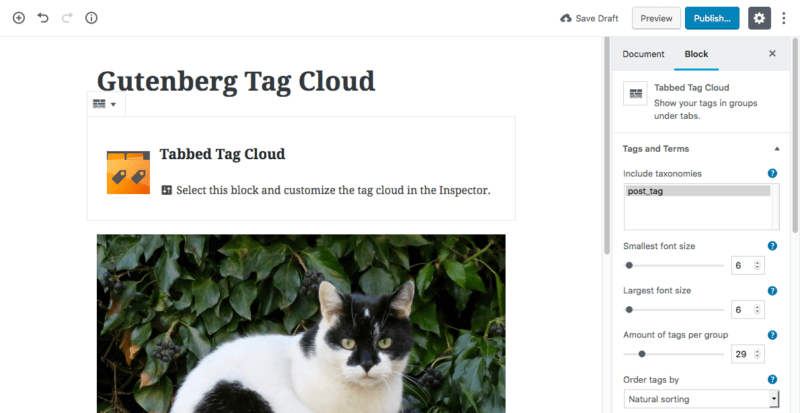Screenshot - WordPress - Gutenberg - Dynamic Block - Tag Cloud Plugin